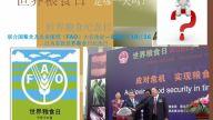 中國糧食安全